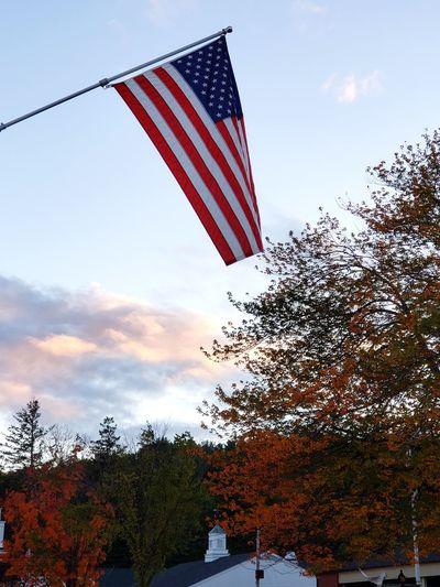 Red Patriotism Flag Flying Cultures Freedom Striped Sky