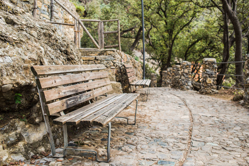 @ Portofino Regional Natural Park, Liguria, Italy Bench Nature Perspective San Fruttuoso Di Camogli Trees Italy Park Pathway Pavement Promontory Promontory In The Background Railings Retaining Wall Stone Stone Wall Viewpoint