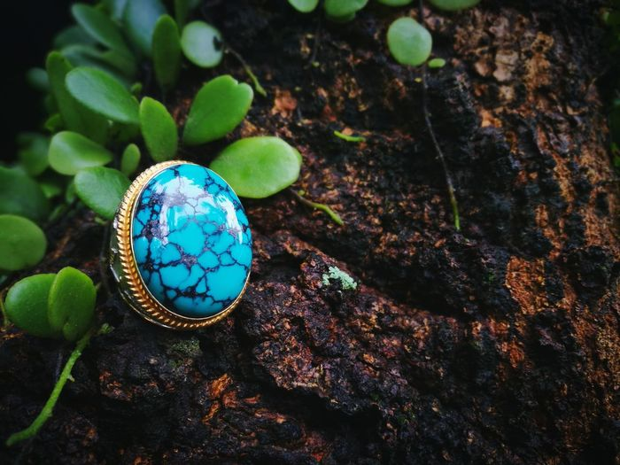 Blue Gemstone Ring Gemstone  Gems Outdoor Photography Ring Stone Material Nature Planet Earth Leaf High Angle View Close-up Plant Green Color Precious Gem Jeweller