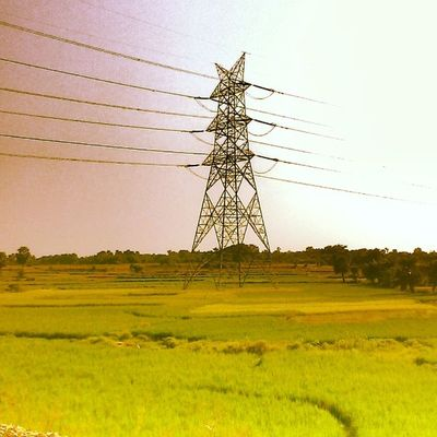 Power of life || (clicked from a speedy train 🚄)