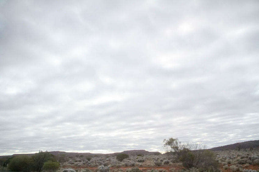 Nullarbor Plain Nature Nullarbor Nullarbor Plain Nature Nullarbor Nullarbor Plain Cloud - Sky Sky Beauty In Nature Scenics - Nature Nature Tranquility No People Day Tranquil Scene Environment Landscape Outdoors Non-urban Scene Land