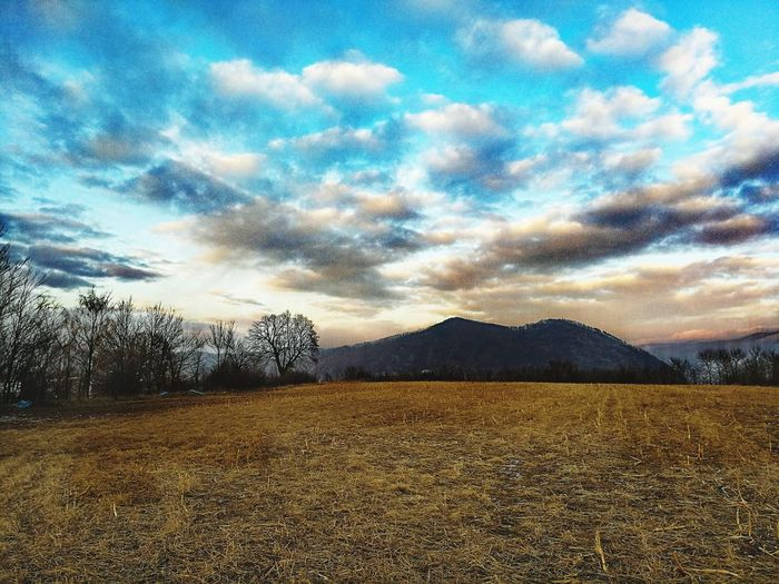 Colors Beautifulvillage Countryside EyeEm Best Shots HuaweiP10 Sky Cloud - Sky Nature Agriculture No People Outdoors Tranquility Scenics Rural Scene Day Landscape Beauty In Nature Tree Tranquil Scene Field Sunset Grass Bare Tree EyeEmNewHere An Eye For Travel