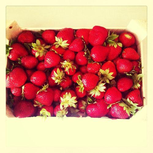 Strawberry Red Yummy