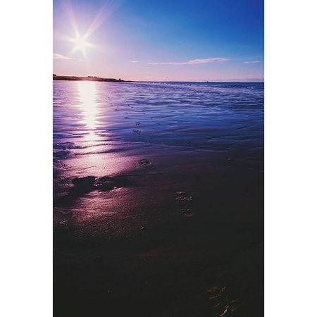 Footsteps... Bamburgh Beach Sand Sunset_captures_ Sunset_love Icu_britain CapturingBritain Ukpotd Loves_united_kingdom Ig_britishisles Ignaturecapture Ignature Natureshots Igersnorthumberland Northumberland Explorenland Britains_talent