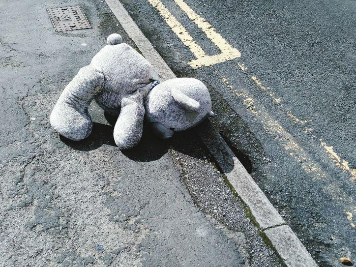 Street Road Toy Plushie Bear Forgotton Lost Toy Lost Tedy Bear Random Findings Grey Gray Street Abandoned Childhood Fresh On Eyeem
