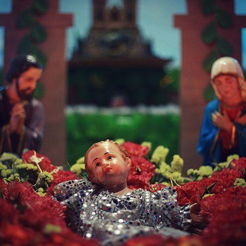 Nativity Scene Of Jesus Christ
