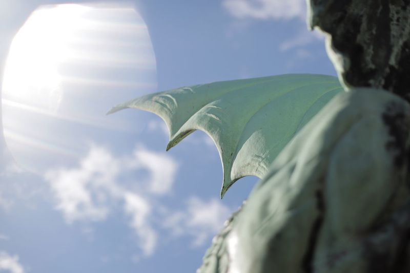 The dragon's way Treasure Flying Force Of Nature Power In Nature Dragonfly Dragon Wings Sculpture Architecture Leaf Plant Part Cloud - Sky Nature Sky Low Angle View Day Sunlight Unrecognizable Person Lens Flare Close-up Outdoors