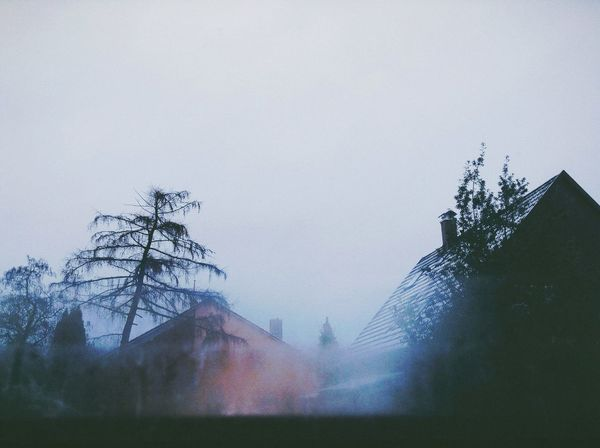 Treetops and rooftops and glass Vscocam From Windows