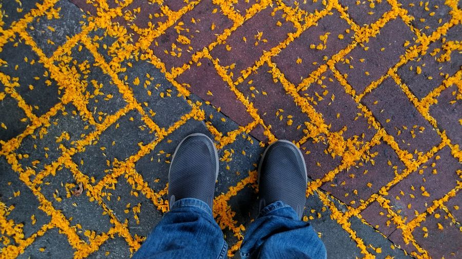 From My Point Of View From Where I Stand Yellow Flower Lines Looking Down Low Section Standing Human Leg Shoe High Angle View Close-up Footwear Trousers Pair Fall Jeans Human Feet Canvas Shoe Flat Shoe Things That Go Together Stone Tile Personal Perspective The Art Of Street Photography