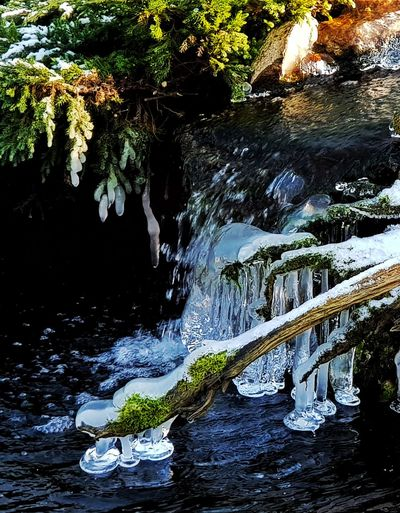 Erstarrter Wasserfall Wasserfall Waterfall Water Reflections Winter Cold Cold Temperature Ice Frost Frosty Frosty Morning Fototour Photography Photooftheday Photographer Garden Garden Photography Garten Teich