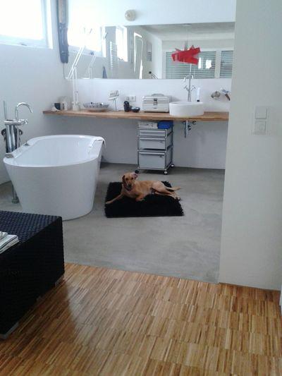 Kleiner Henry @home... in the bathroom / have a shower? Dogs Of EyeEm Dog❤ Modern Architecture Moderndesign
