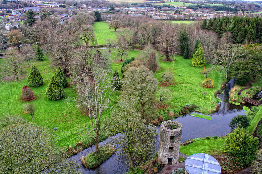 Ancient Civilization Blarney Castle Bush Day Formal Garden Garden Geology Grass Green Green Color Growth Ireland🍀 Leading Lush Foliage Moss Nature Outdoors Park Physical Geography Plant Tree Vacation