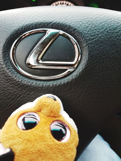 Toy Indoors  Close-up No People Stuffed Toy Childhood Day Plush Fox Foxylady Foxlife Fox Face Fox🐺 Plushtoy Fox Plush Toy Lexus LEXUS GS Lexus GS300 Fox And Lexus Pink Eyes Fox Nails Pink Eye Pink Eyes <33. Lexus ❤ Lexusamazing Live For The Story