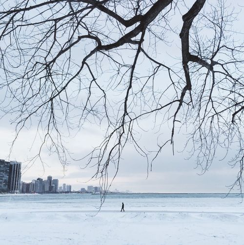Bare Tree Beauty In Nature Branch Cold Temperature Day Full Length Horizon Over Water Leisure Activity Nature One Person Outdoors People Real People Scenics Sea Sky Tree Water Winter