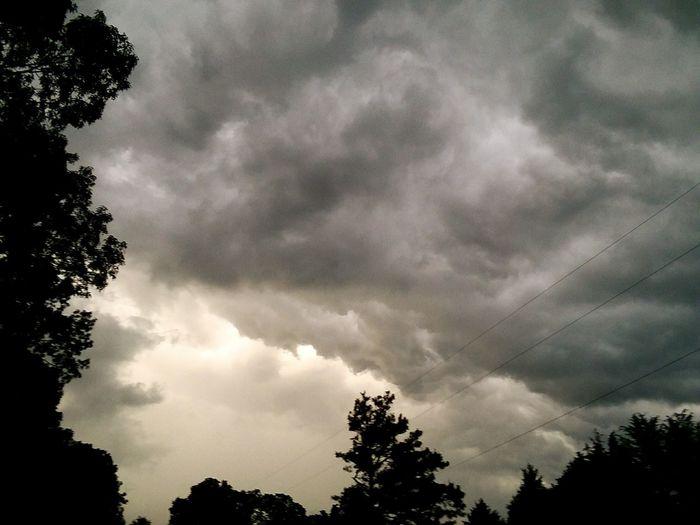 Tree Storm Cloud Silhouette Sky Thunderstorm Overcast Cumulonimbus Treetop Dramatic Sky Meteorology Atmospheric Mood Sky Only Storm