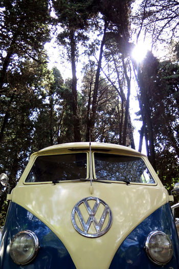 Vw Van Classic Car Retro Summertime Surf Surf Van VW VW Bus VW Käfer Volkswagen Beetle Car Collection Car Exposition Fusca Land Vehicle Luxury Mode Of Transport No People Old-fashioned Outdoors Retro Car Summer Transportation Tree Van Volkswagen