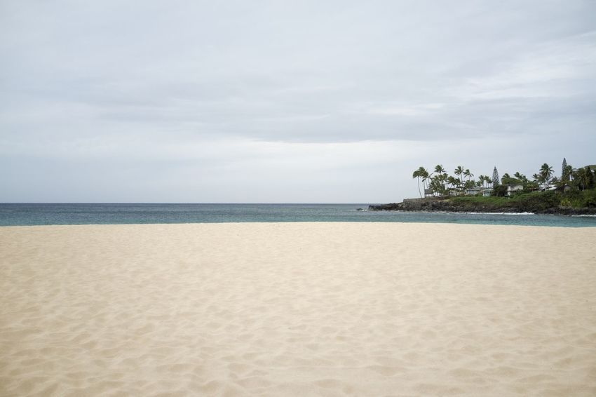 I like it when no one's around. Hawaii Oahu Oahu, Hawaii Beach Beauty In Nature Horizon Horizon Over Water Land Nature No People Outdoors Remote Sand Scenics - Nature Sea Simplicity Sky Tranquil Scene Tranquility Travel Destinations Tree Tropical Climate Waimea Bay Water