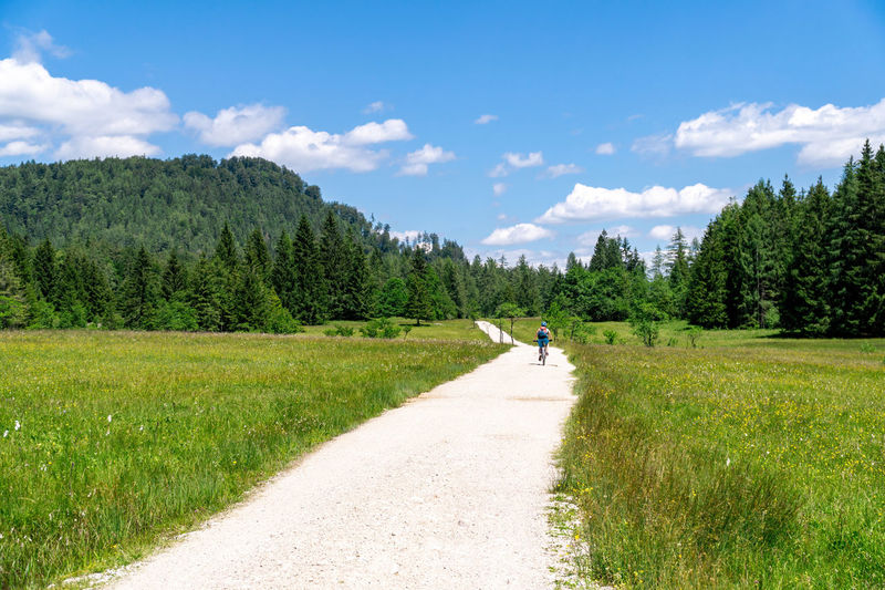 Rear view of woman on mountain bike on gravel road surrounded by blooming fields, austria.