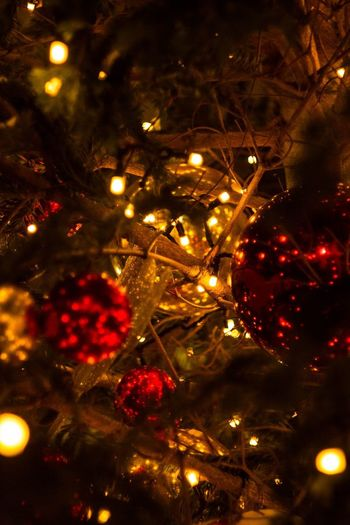 рождество Christmas