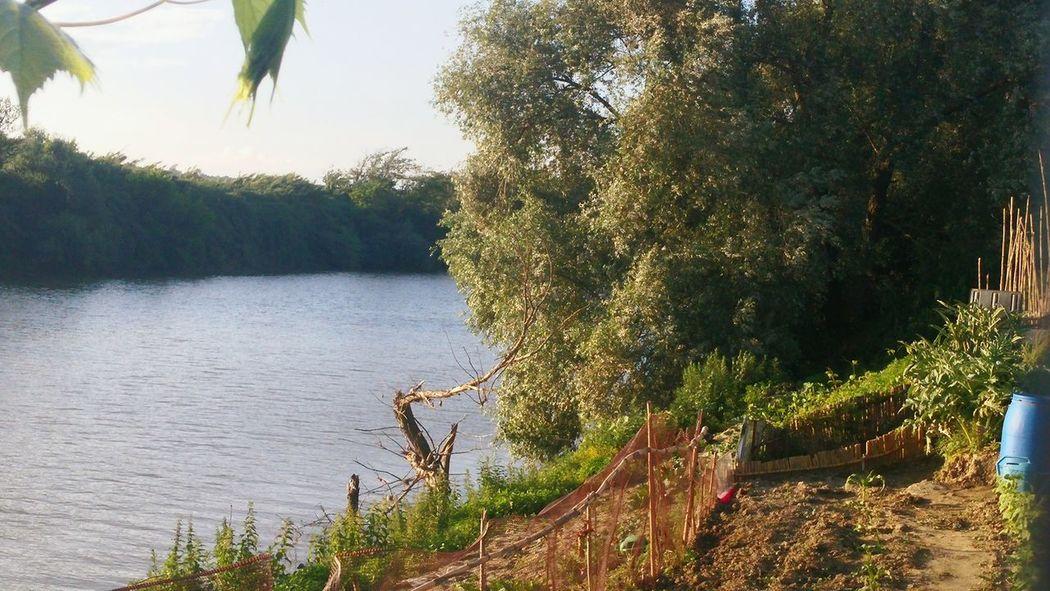 Beautiful Love Nature Primavera Sun Sole Fiume Riverview