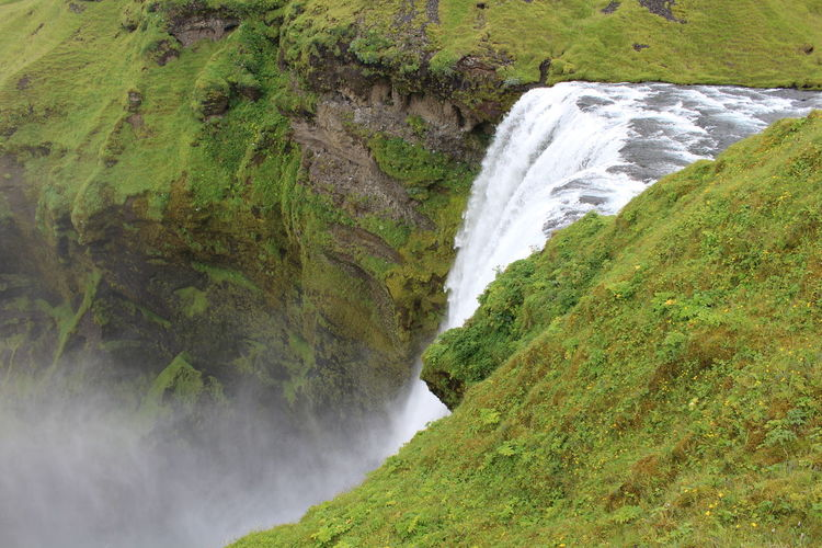 Iceland waterfall Water Scenics - Nature Waterfall Beauty In Nature Plant Motion Flowing Water Land Long Exposure Green Color Environment Nature No People Flowing Power Power In Nature Outdoors Iceland Memories Iceland Trip Iceland Roadtr Roadtrip Island Tree