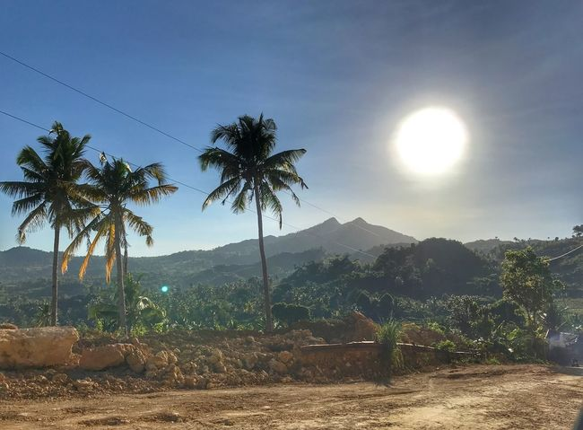 Welcome to the provincial life! Palm Tree Tree Scenics Sky Mountain Nature Beauty In Nature Tranquil Scene Growth Tranquility Sun No People Landscape Sunbeam Idyllic Mountain Range Outdoors Day