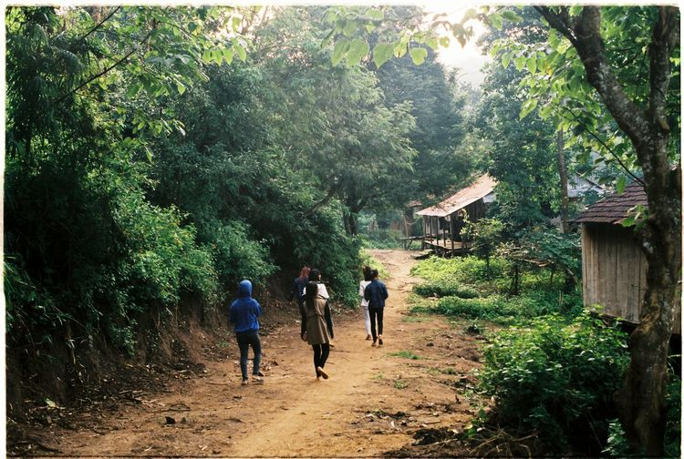 Morning in Kon Rong village, Central Highlands (Vietnam) Analog Camera Analogue Photography FujicolorC200 Gialai Green Highland Peace Quiet Vietnam Vietnamese Beauty In Nature Day Ethnic Forest Full Length Growth Men Nature Outdoors Peaceful Pentaxspotmatic People Tree Walking