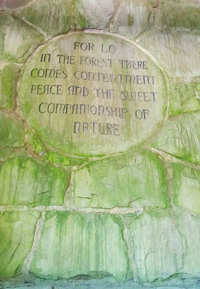 I went out to the Redwoods last weekend. It was a beautiful day. In the middle of the park this was engraved with these words. True words for me.😍Park Beautiful Beautiful Nature Check This Out Beautifulwords Engraved Engraved Stones