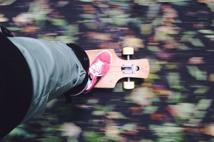 Autumn Is Coming. Longboard Skate Autumn