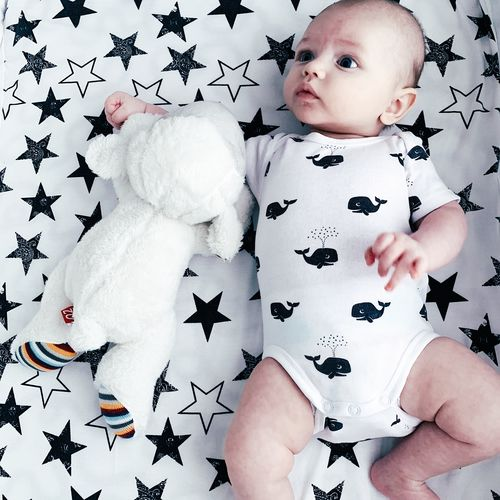 Baby Young Child One Person Childhood Babyhood Real People Representation Indoors  Toddler  White Color Star Shape Cute Innocence Boy Baby Boy Baby Playing Cute Boy Cute Baby Sheep Toy Toy Front View Newborn
