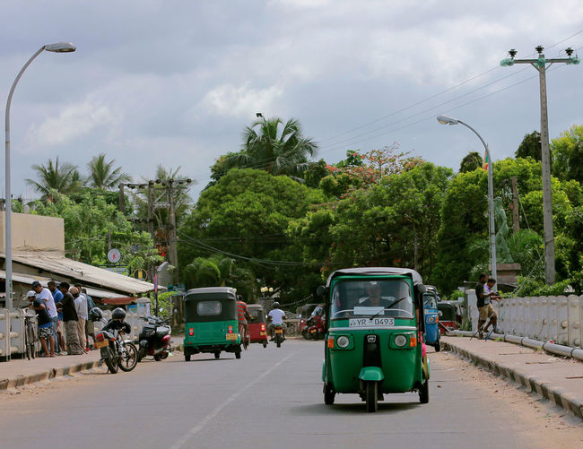 Vehicles on road by trees in city against sky