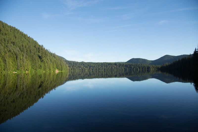 Early morning sunrise hike around Lost Lake, OR. This was a peaceful morning that was full of color and energy. Colors EyeEm Best Shots EyeEmNewHere LostLake MtHood Oregon PNW Reflection Colorful Conon Eye4photography  Mountain Shadow Shillouette Shilouette Sunrise Travel Destinations