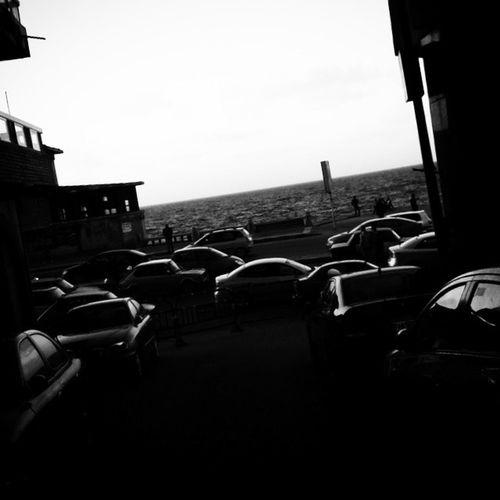 زحمة اسكندرية