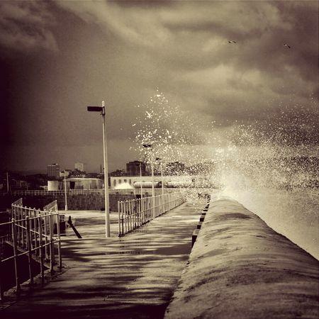 Taking Photos Sea Endless Summer EarlGrey