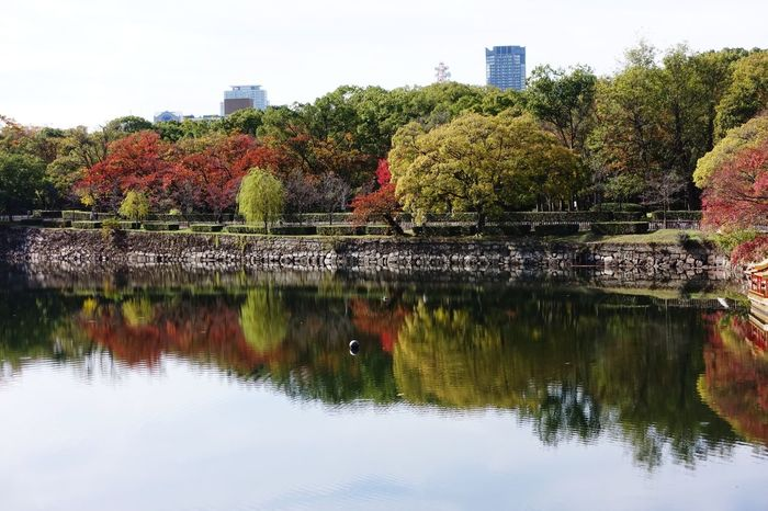 Reflection Tree Sky Outdoors No People City Cityscape Osaka Japan OSAKA Autumn🍁🍁🍁 Autumn Leaves Nature In The City Around Osaka Castle