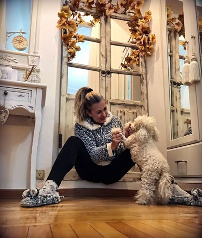 Playing Pet Loyalty Togetherness Confidence  Bonding Poodletoy Dog Poodle Indoors  Home Interior Pets One Person Dog Casual Clothing Sitting Table Domestic Animals Girls Childhood Real People Blond Hair Animal Themes Mammal