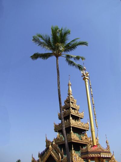 Ornate Roof & Ceremonial Column at Yaylel Pagoda Blue Sky Buddhism Buddhist Architecture Buddhist Art Buddhist Culture Buddhist Pagoda Buddhist Temple Clear Sky Composition Gold Coloured Myanmar No People Ornate Roof Outdoor Photography Palm Tree Place Of Pilgrimage Place Of Prayer Place Of Worship Religion Spirituality Sunlight And Shade Thanlyin Travel Destination Unusual Yaylel Pagoda