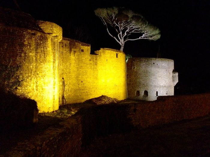 France Tree Castle Night Lights Getigne