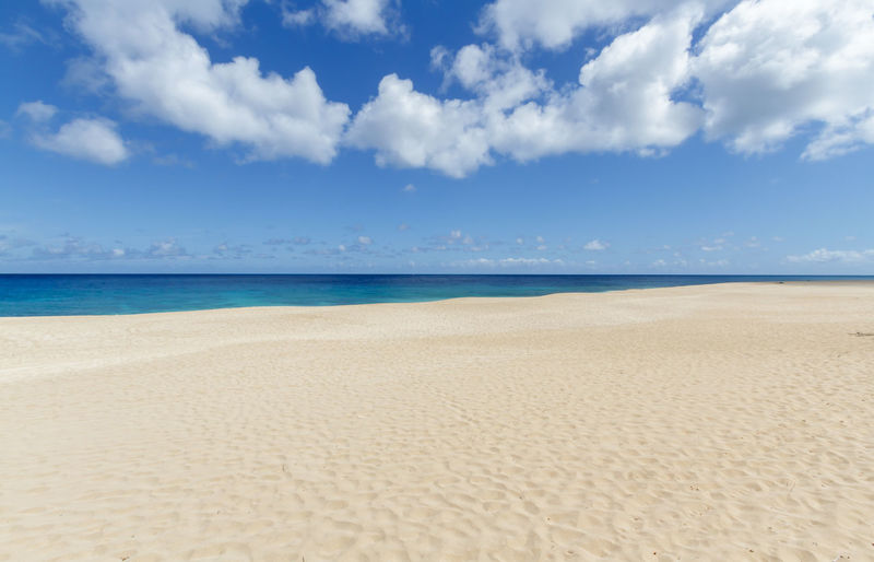 Tropical sandy beach on the north shore of Oahu Hawaii Hawaii Nature Oahu USA Beach Beauty In Nature Blue Cloud - Sky Day Hawaiian Islands Horizon Over Water Nature No People North Shore Ocean Outdoors Sand Sandy Scenics Sea Sky Tranquil Scene Tranquility Tropical Water