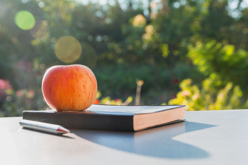 Apple - Fruit Book Day Focus On Foreground Food Food And Drink Fruit Healthy Eating Nature No People Orange Orange Color Outdoors Plant Publication Stack Still Life Sunlight Table Tree Wellbeing
