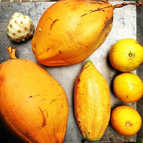 Rawfooddiary Noni 2x  Coconutwater 3xorange cacaomeat rawvegan day1rawfooddiary 801010 rawfood rawismyreligion