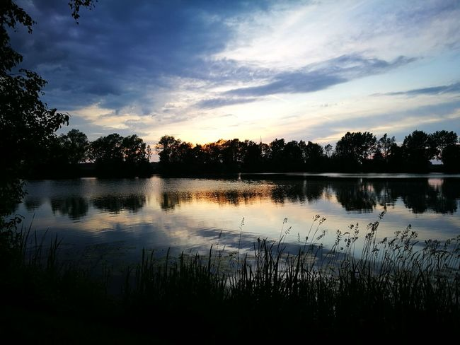 Beauty In Nature Sun EyeEm Nature Lover Sunset HuaweiP9 Tree Water Sunset Lake Silhouette Reflection Sky Cloud - Sky Reflection Lake Standing Water Reflecting Pool Lakeshore