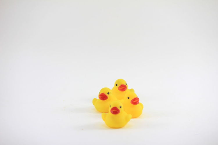 Yellow rubber duck on a white background Yellow Rubber Duck On A White Background Childhood Close-up Copy Space Indoors  No People Studio Shot Toy White Background Yellow