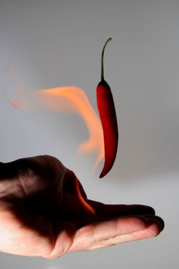 Cropped burning hand catching red chili pepper against gray background