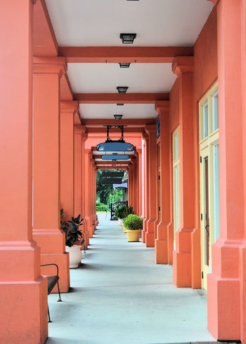 In Celebration Florida, there are many nice places to find fun shots Celebration DisneyWorld Leading Lines Orlando Arches Architecture Building Exterior Built Structure Centered Perspective Day Florida Forced Perspective In A Row No People Outdoors Pastel Colors Repeating Patterns Repetition The Way Forward Walkway