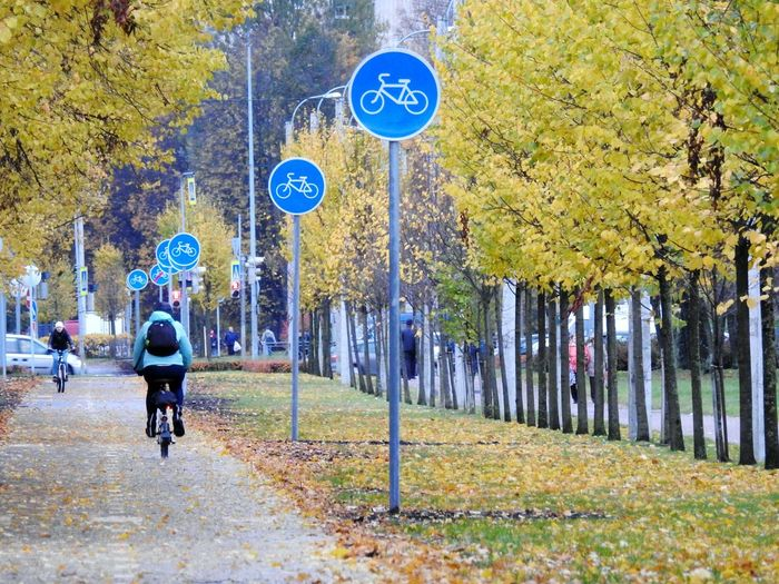 Rear View Of Person Riding Bicycle On Road At Park During Autumn