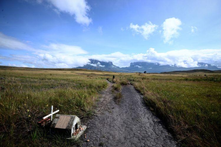 Monte Roraima Trip Viagem Rural Scene Agriculture Cereal Plant Field Sky Landscape Cloud - Sky Grass