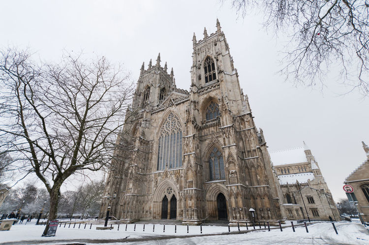 York Minster in the winter Architecture Bare Tree Branch Building Exterior Built Structure Cold Temperature Day England History Low Angle View Nature No People Outdoors Place Of Worship Religion Sky Snow Spirituality Travel Destinations Tree Winter Winter York York Minster  Yorkshire