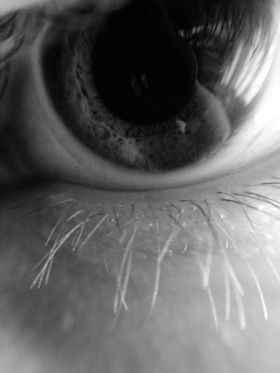 Eye Macro Macro_collection Man Eye Blackandwhite IPhoneography
