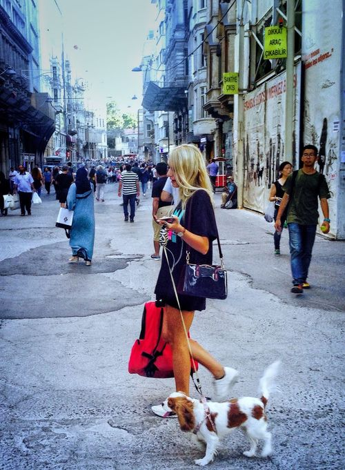 İstanbul sokakları.. Gazonungözü Street Walking One Animal Pets Outdoors Women Lifestyles City Mobile Phone Istanbullife Beauty